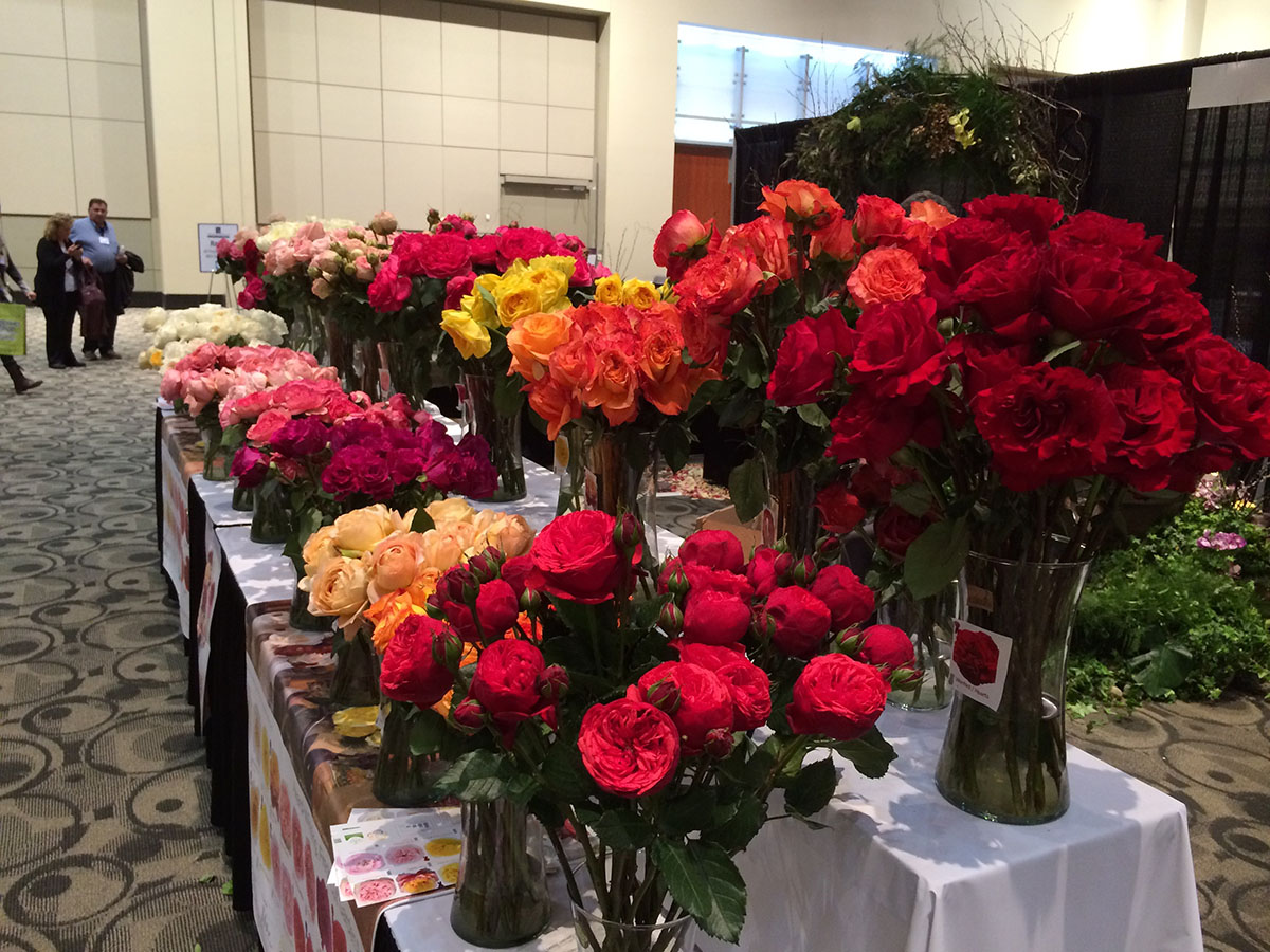 Great-Lakes-Floral-Expo-2015-54.jpg
