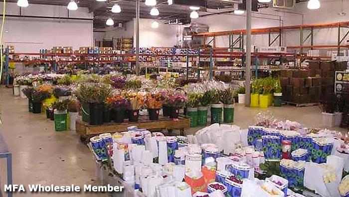 mfa_wholesale_member.jpg